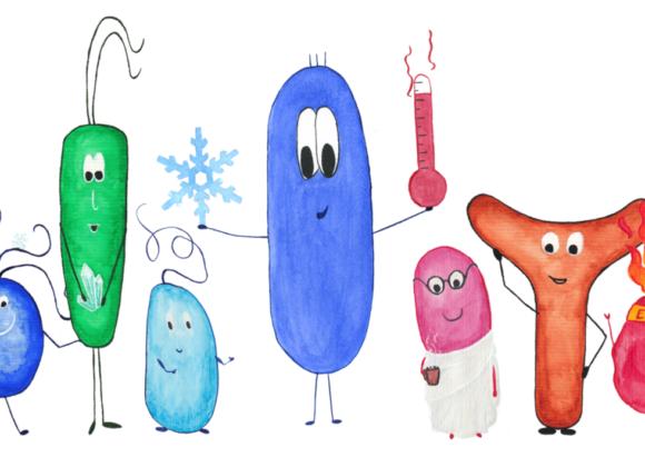 MikiE – Mikroben im Einsatz