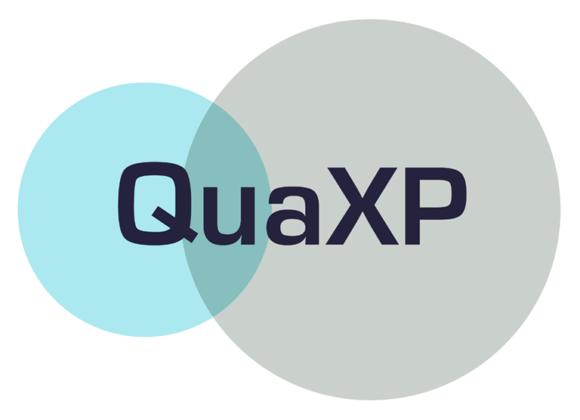 QuaXP – data quality explored