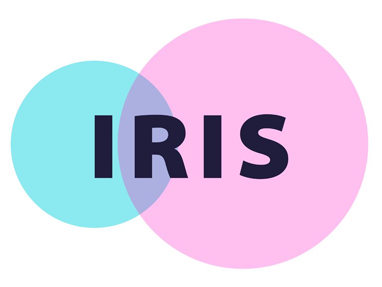 IRIS – Individual Resorbable Intestinal Stents